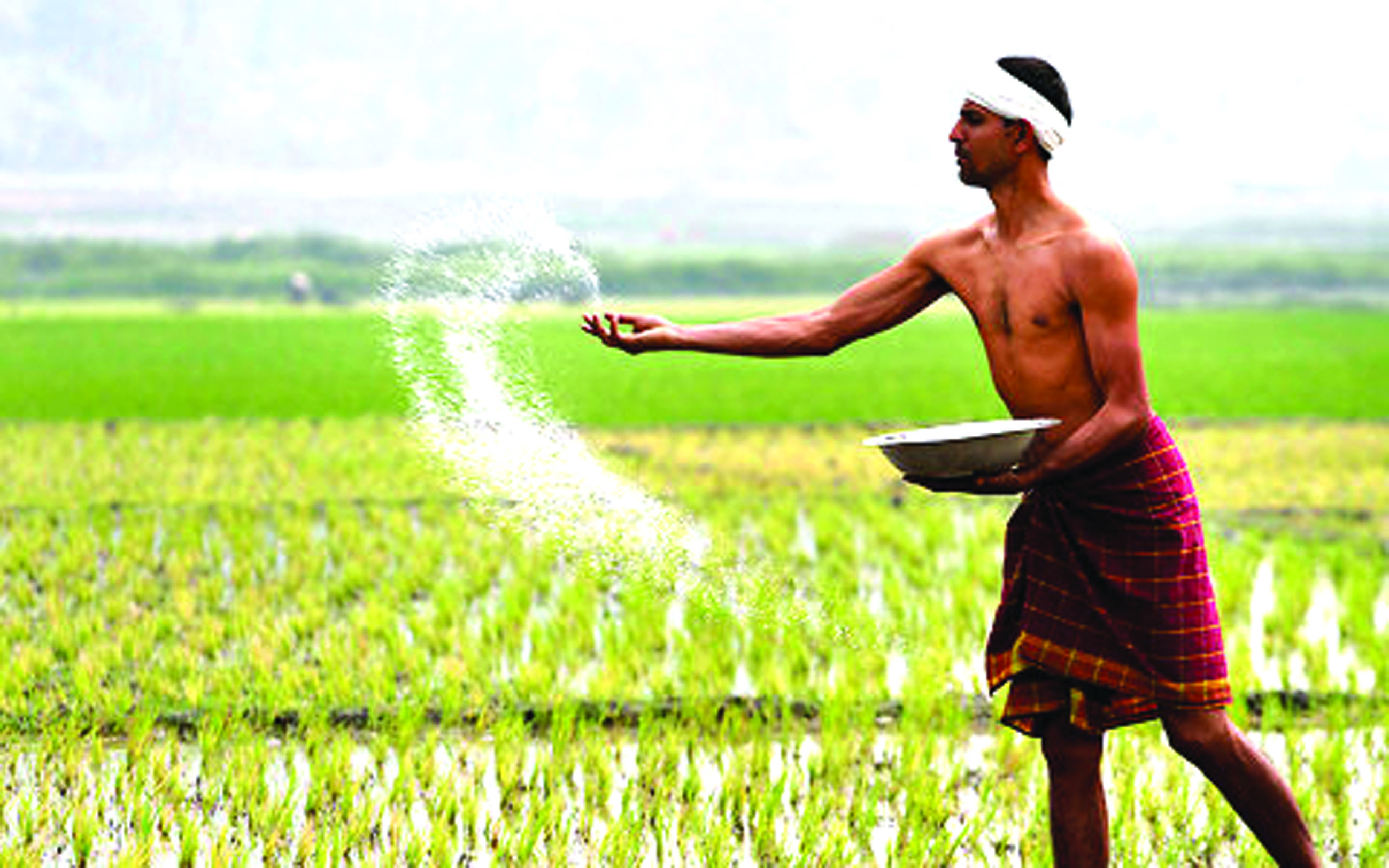 gst-on-bio-fertilisers