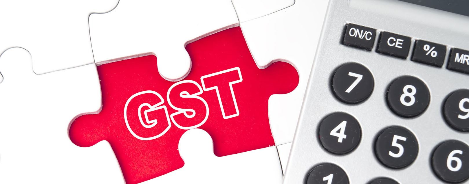 GST Law model